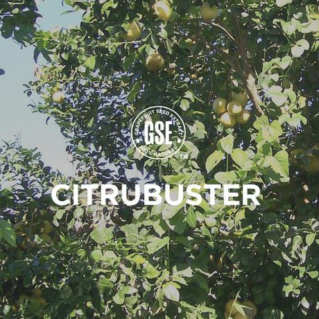 5%OFF※送料無料 【お得なセット】CITRUBUSTER除菌・抗菌スプレー - 50ml - 24本セット