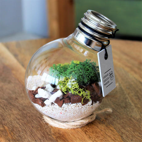 URBAN GREEN MAKERS TERRARIUM KIT #2