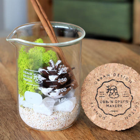 URBAN GREEN MAKERS TERRARIUM KIT #8