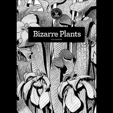 Bizarre Plants / YUTA OKAMURA
