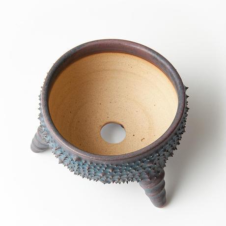 圭介窯 [トゲモノ] KSG-414