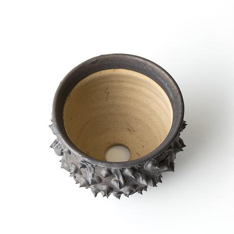 圭介窯 [トゲモノ] KSG-460