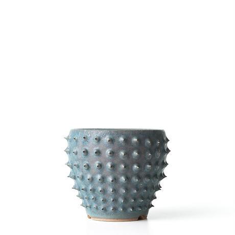 圭介窯 [トゲモノ] KSG-456