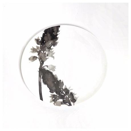 hakuji 白磁中皿 -オーニソガラム |White Porcelain plateM-Ornithogalum