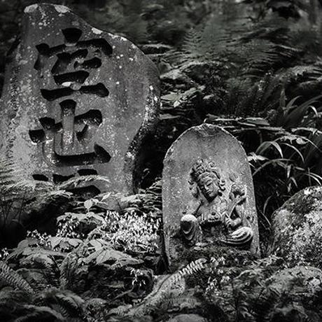 Japan vol.11