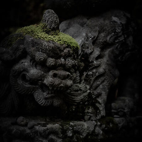 Japan vol.14