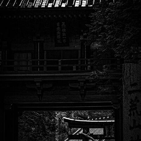 Japan vol.19