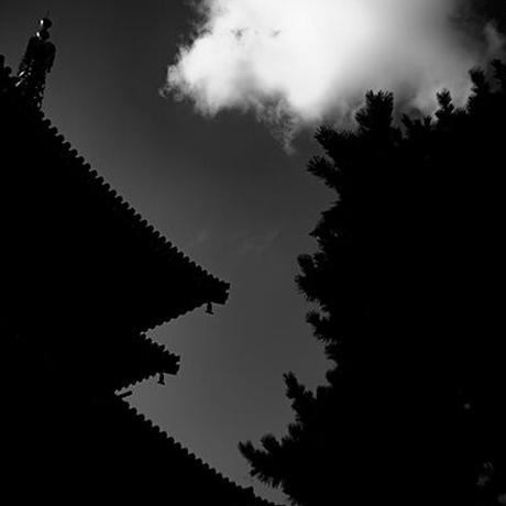Japan vol.8