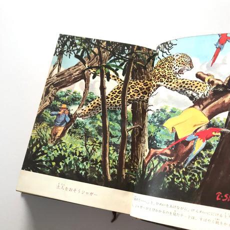 南米の大密林を行く