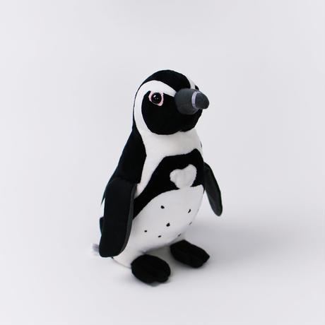 ペンギンのペンペンセット