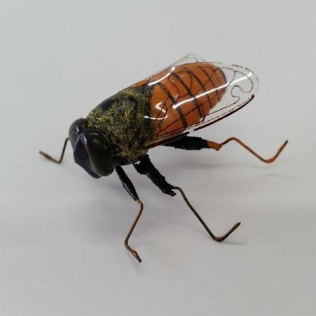 昆虫模型:野蜂  8匹セット