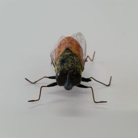 昆虫模型:野蜂