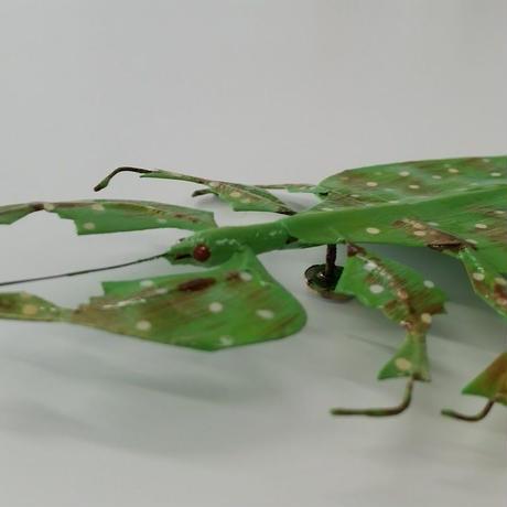 昆虫模型:コノハムシ 葉っぱ虫