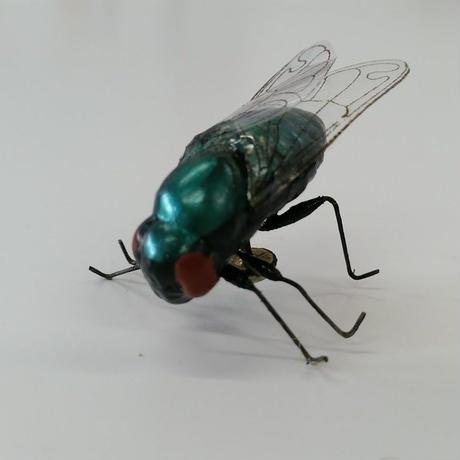 昆虫模型:蝿