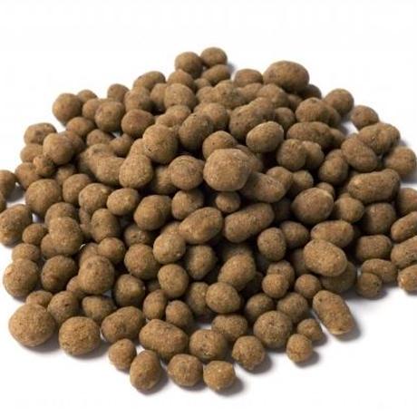 こだわりのジロ吉ごはんだよ!・Cats・オールステージ・総合栄養食 小粒 500g