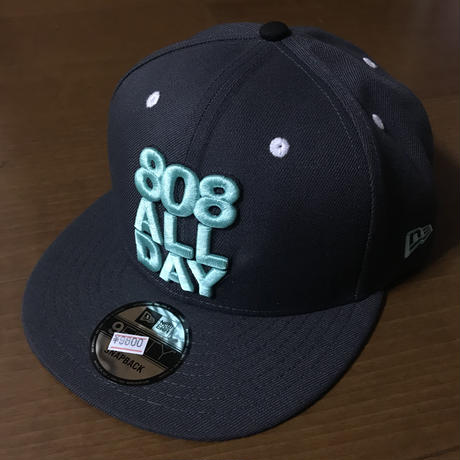 "808ALLDAY ""STACK"" GRAY/TEAL HAT"