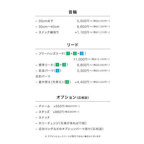 パラコード編み 首輪〜40cm  & 標準リード +ステッチセット[オーダー]