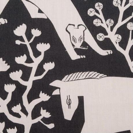 丹野杏香|FOREST