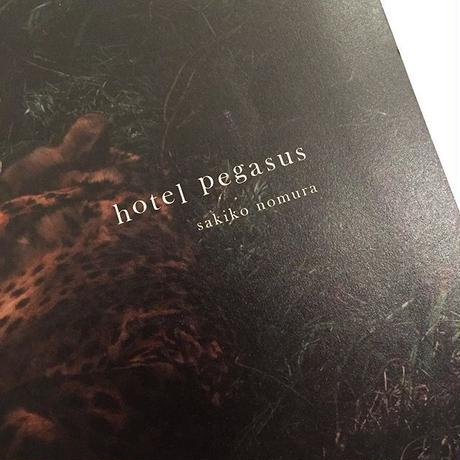 sakiko nomura|hotel pegasus