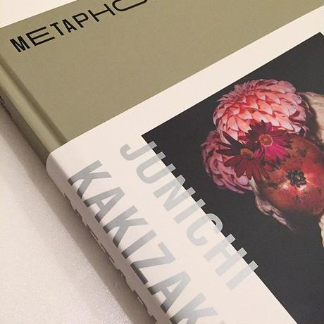 JUNICHI KAKIZAKI|METAPHOR
