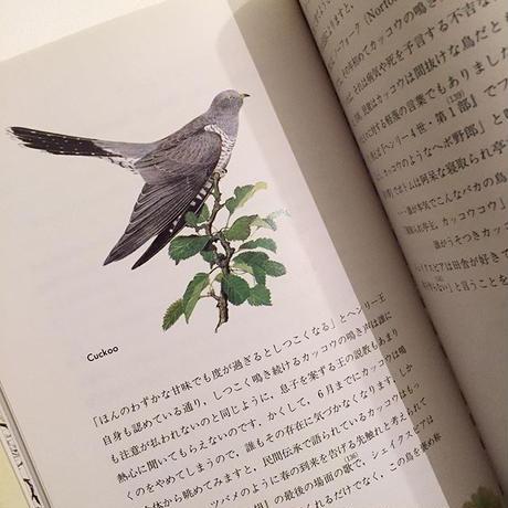 ピーター・グッドフェロー|シェイクスピアの鳥
