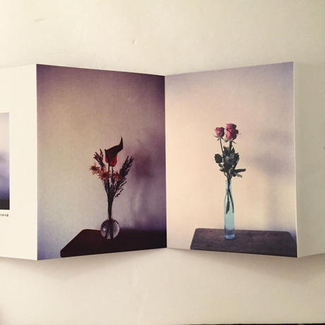 Haruka Akagi|花たちへ