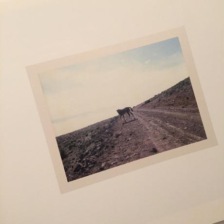 Charlotte Dumas|THE WIDEST PRAIRIES