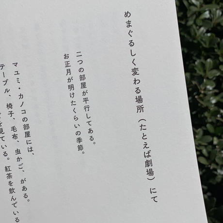 宮崎玲奈 | つかの間の道