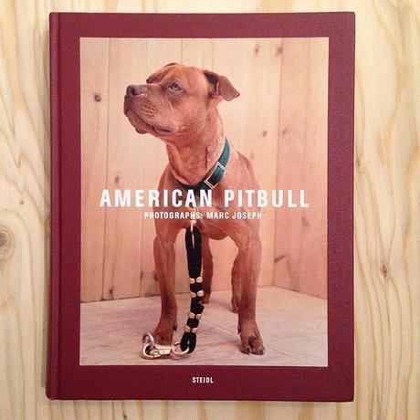 MARC JOSEPH|AMERICAN PITBULL