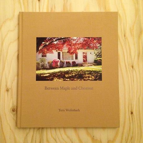Terri Weifenbach |Between Maple and Chestnut