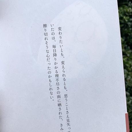 詩・白井明大 絵・カシワイ | いまきみがきみであること