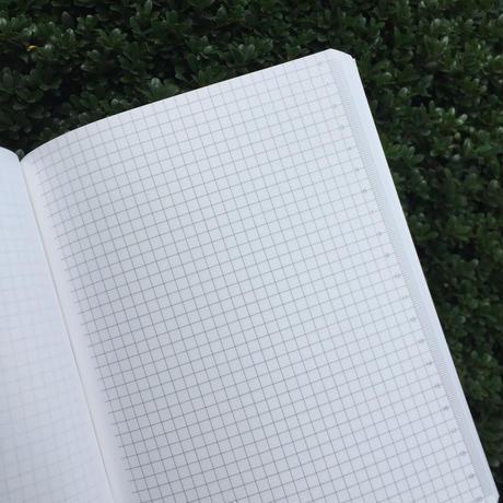 COUPGUT schedule notebook 2021