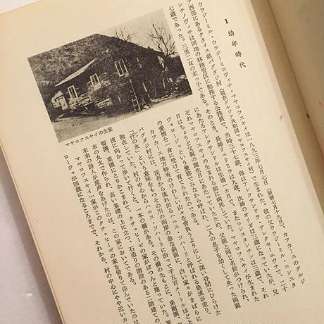 水野忠夫|マヤコフスキイ・ノート