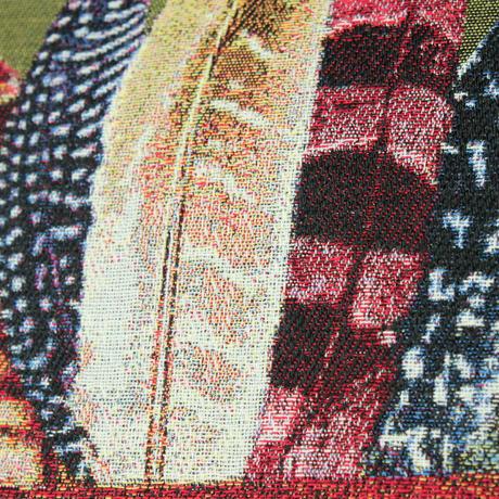 インディアン猫のジャカード織クッション