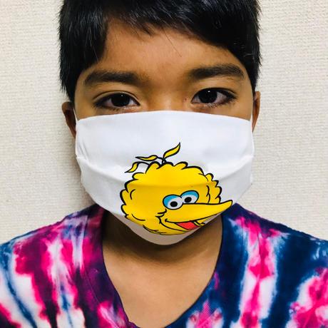 ハンドメイドマスク(3layer) BIG BIRD
