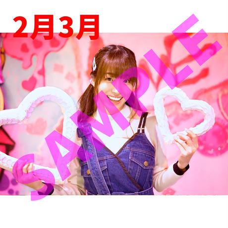 富田麻帆壁掛けカレンダー2021-2022