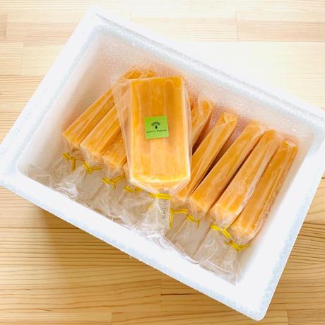 山川みかんアイスキャンデー10本セット