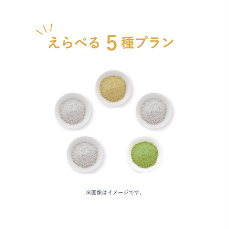 【定期便】えらべる5種