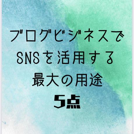 ブログ収益化を最速で叶えよう!『SNS8種のビジネス活用術』まとめ集 83ページ