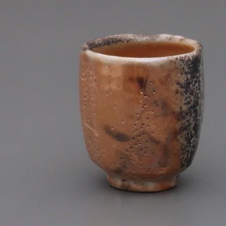 No.123:Gold SHINO Cup「金志埜湯呑」