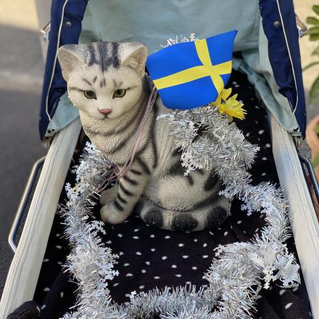 SWEDEN GRACE&一般社団法人「ねこと今日」よりMESSEGE