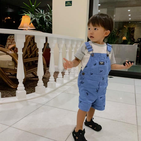 【oshkosh】Boy's  Blue  Dinosaur   Coverall