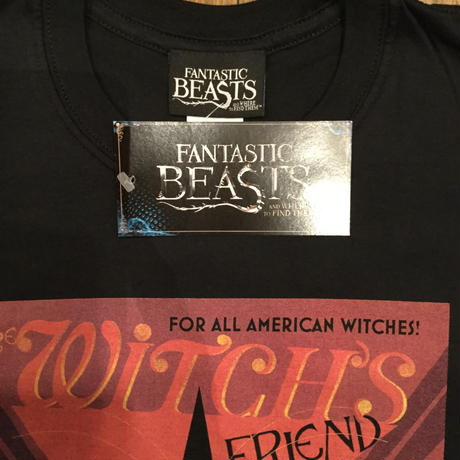 FANTASTIC BEASTS  WITCHS