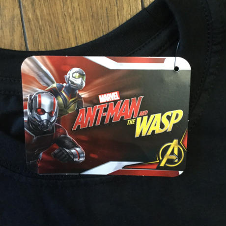 ANTMAN and THE WASP  Banner