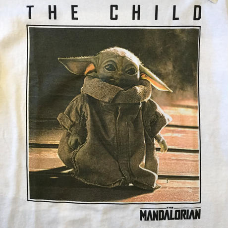 The mandalorian the child