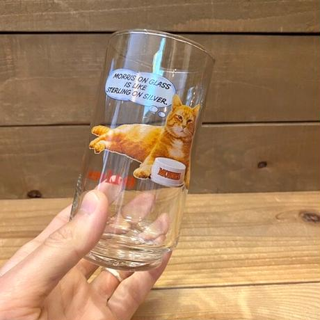 9-Lives Morris the Cat Glass/9ライブズ モリス グラス/210311−1