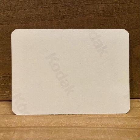 TURTLES Card Sticker/タートルズ ステッカー/210101-13