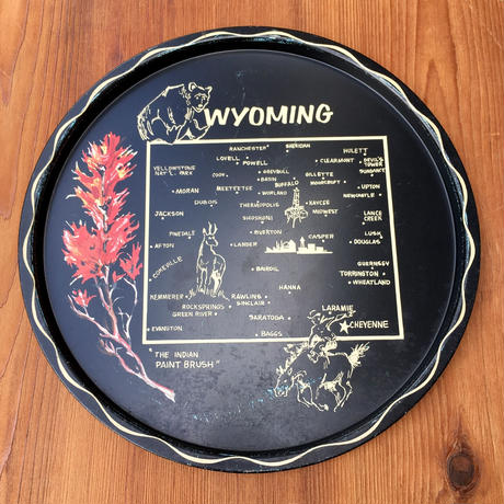 State Of Wyoming Souvenir Tray/ワイオミング州 スーベニアトレイ/190908-3