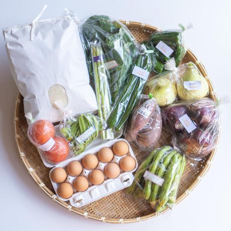 【卵10個、お米5kg入り】季節のお野菜と卵とお米セット 旬菜ボックス