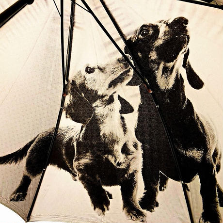 【日傘 わんちゃんシリーズ】傘専門店 通販 東京 遮光遮熱 晴雨兼用 ワンタッチ UV レディース メンズ 旅傘【Pink ミニチュアダックスフンド】